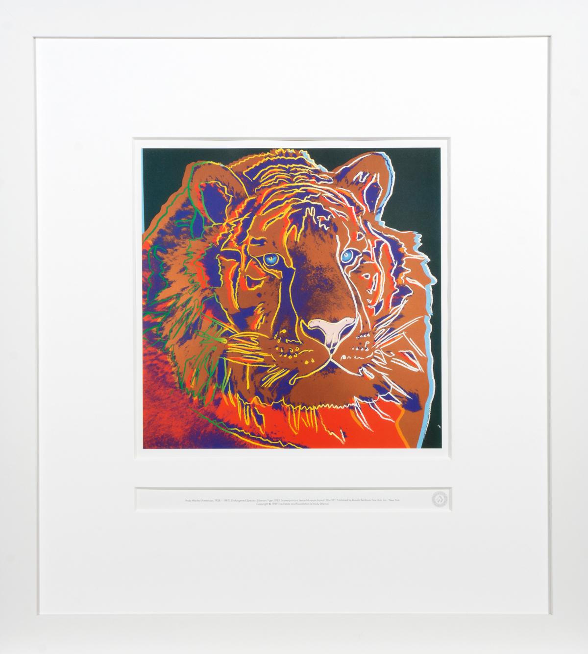 Siberian Tiger in frame